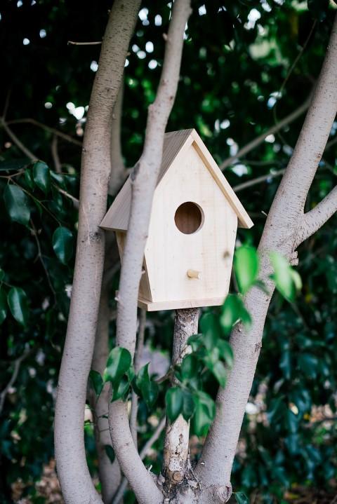 תיבת קינון יונתן – עץ טבעי, אקו סטור