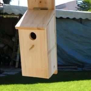 ערכת בנייה תיבת קינון - אלה - DIY