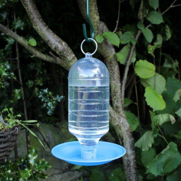 מתקן שתייה לציפורי הגינה