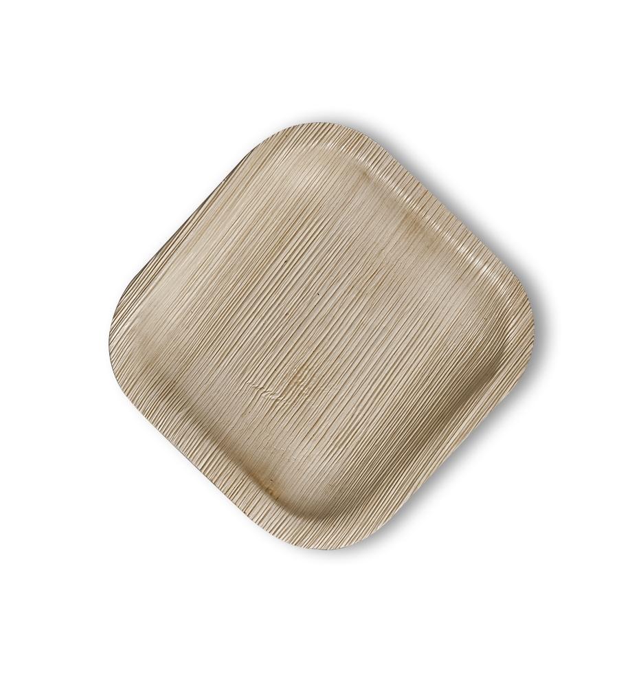 צלחת חד חפמית מרובעת קטנה