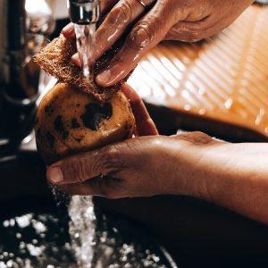 ספוג קרצוף טבעי מסיבי קוקוס