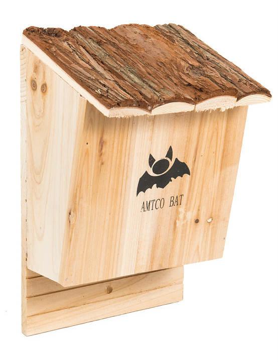 בית לעטלפי חרקים, אקו סטור